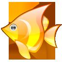 1438341567_babelfish